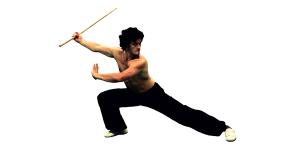 kung-fu-guy